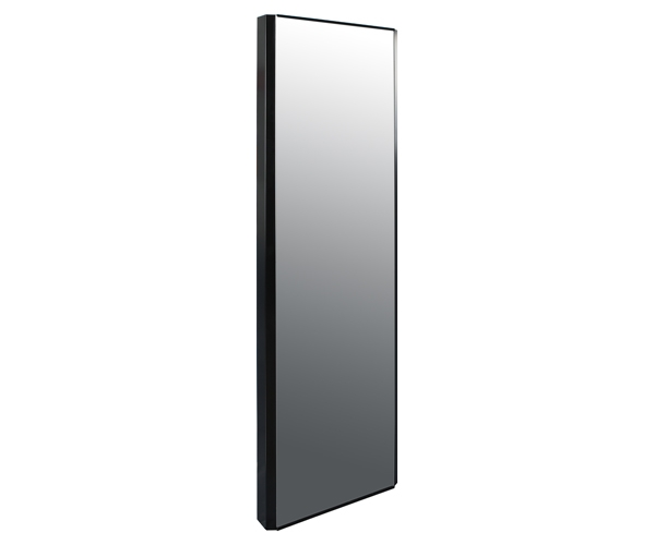 Vertical Panel Radiator with Mirror
